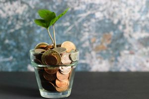 Coins and a small plant in a glass